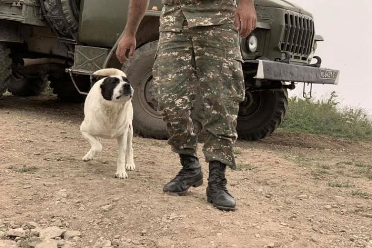 Հայ զինվորները՝ Արաքսի ափին. 80 հայ զինծառայողներ անցե՞լ են Իրանի տարածք. «Ժամանակ»