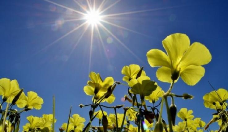 Օդի ջերմաստիճանն ապրիլի 15-17-ը կբարձրանա 4-6 աստիճանով