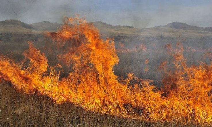 Հացավան գյուղի վերջնամասում այրվել է մոտ 15 հա բուսածածկույթ