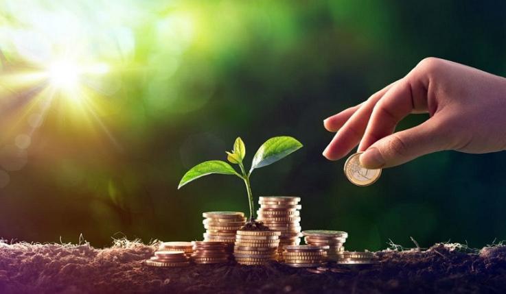 Լոռու մարզում պետական սուբսիդավորմամբ գյուղատնտեսական վարկերի ոչ նպատակային օգտագործման փաստերով 4 քրգործ է հարուցվել