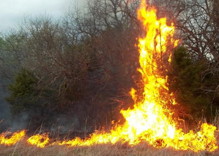 Այգուտ գյուղում այրվել է 1500 հակ անասնակեր