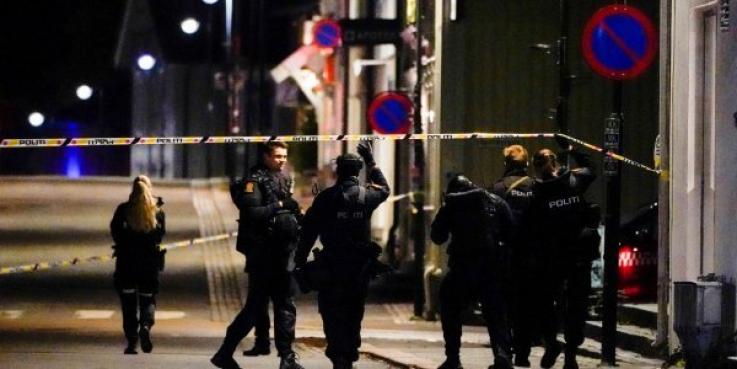 Նորվեգիայում տղամարդը նետահարելով սպանել է մի քանի մարդու